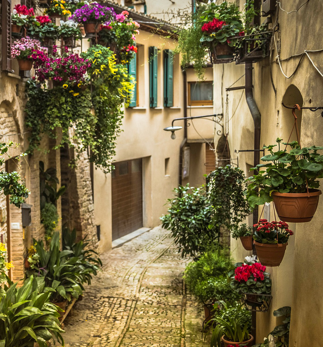 A street full of flowers in Spello, a charming town in the region of Umbria