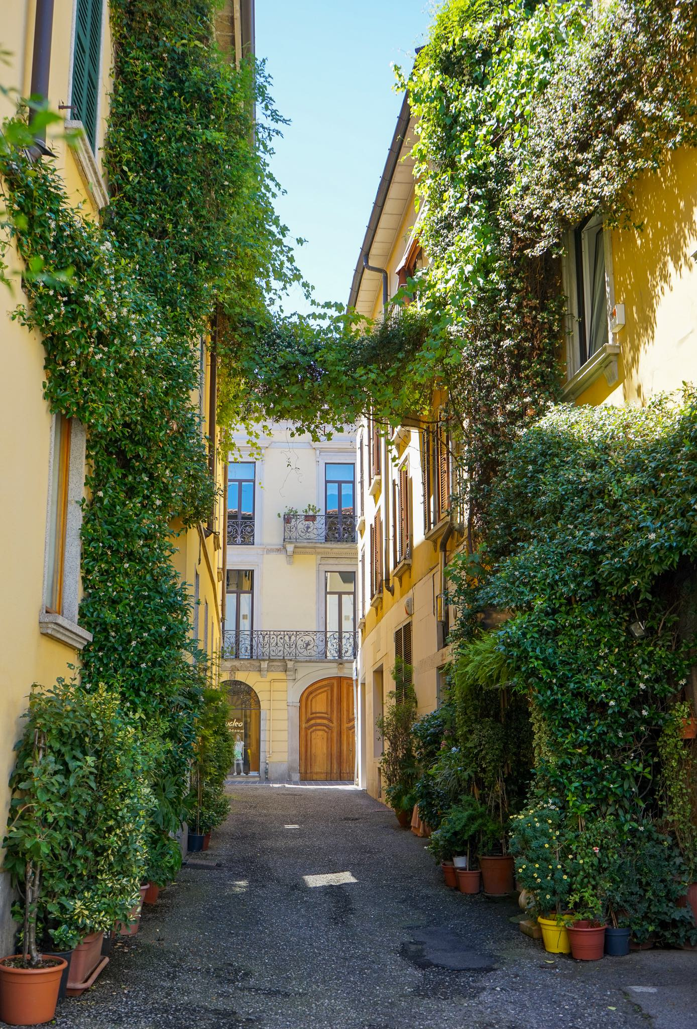 The beautiful via Bellani in Monza historic centre, covered in greenery