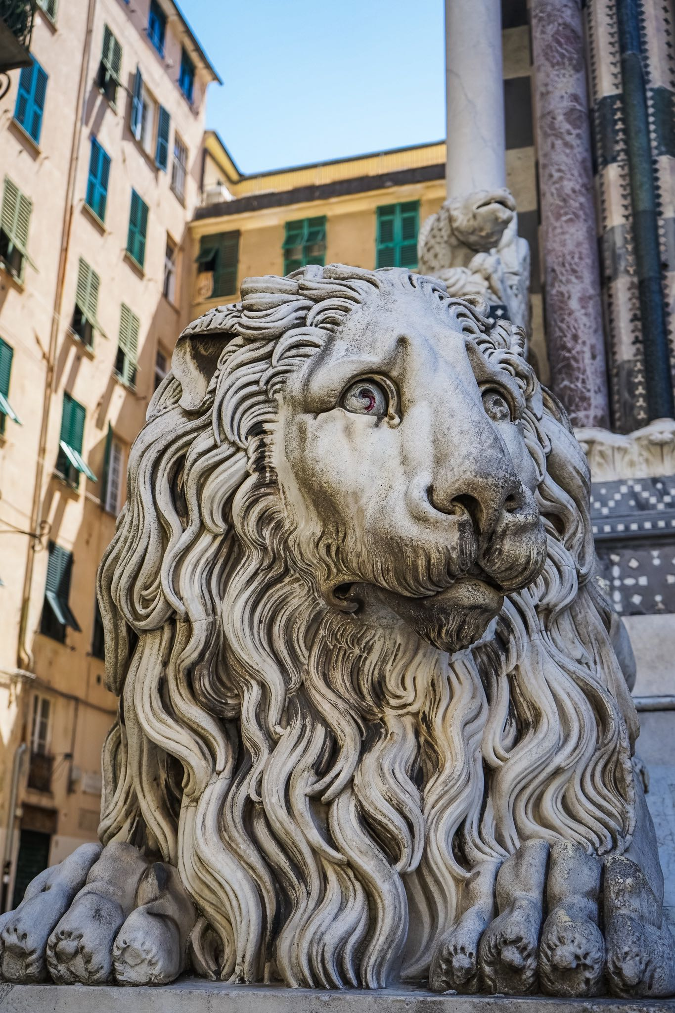 The sad eyes of the lion guarding the Cathedral of San Lorenzo, Genoa's main church