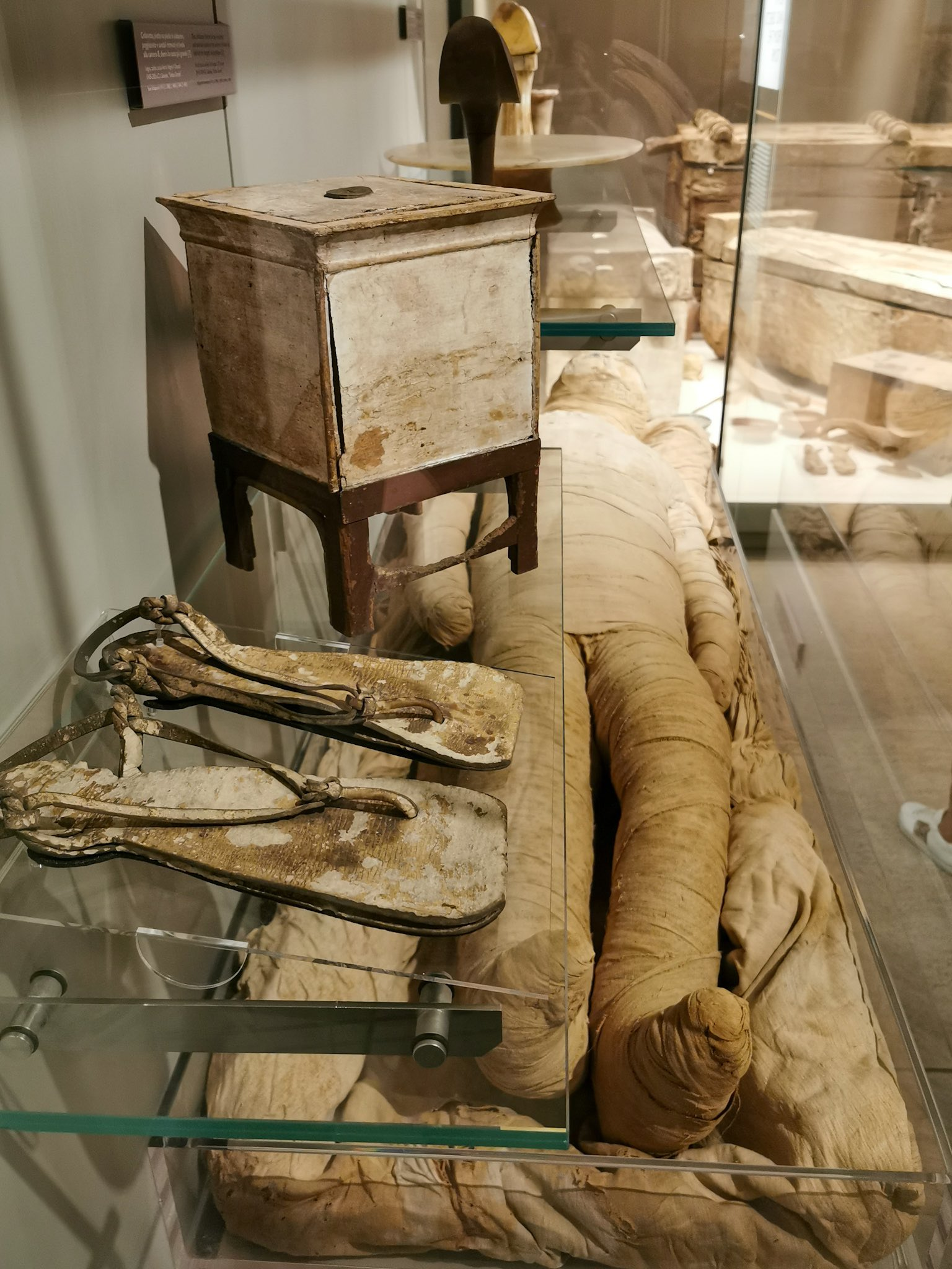 One of the mummies displayed at the Egyptian Museum of Turin