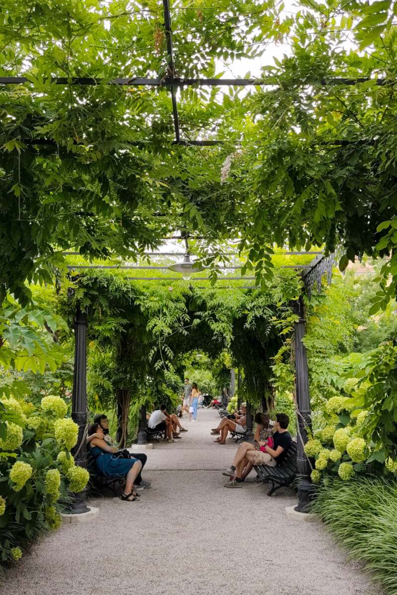 People sitting on benches under the shade of trees at the Royal Gardens of Venice